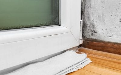 Common Causes of Mold Growth in the Home